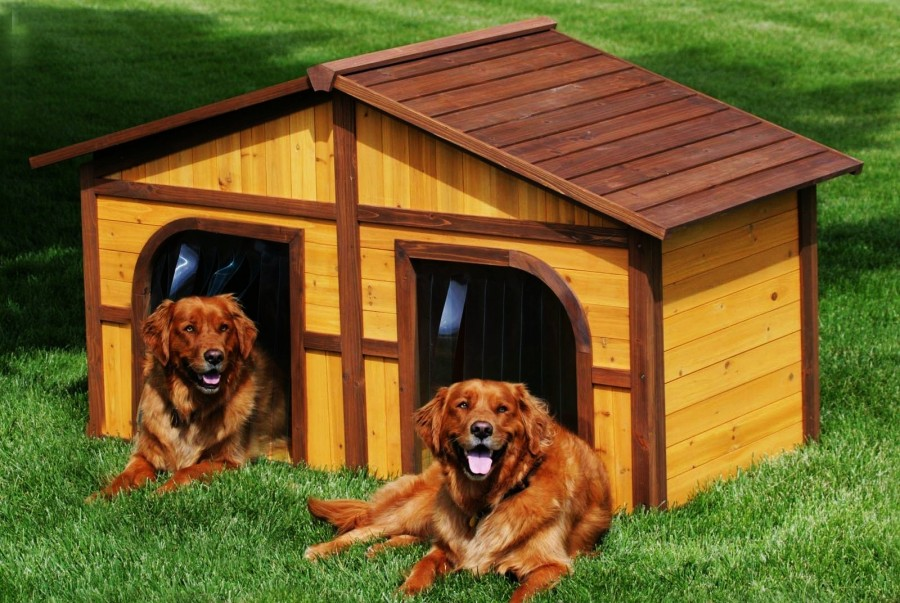 Тёплая будка для двух собак